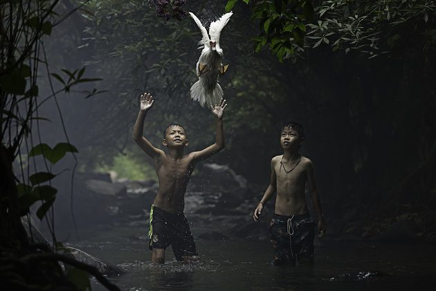 Image: Sarah Wouters/National Geographic Photo Contest 2015